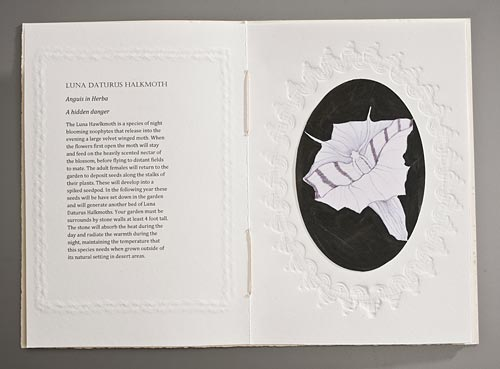 Claire Owen: Bookworks/Turtle Island Press: THE CULTIVATION OF ZOOPHYTES