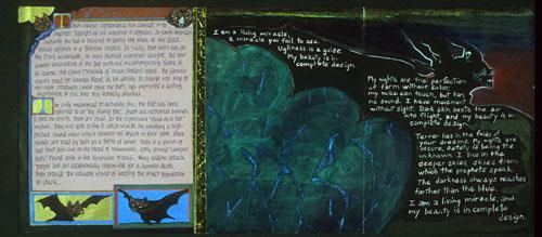 Claire Owen: Bookworks/Turtle Island Press: BESTIARY